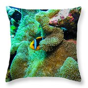 Clown2 With Anemone Throw Pillow