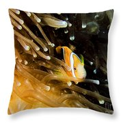 Clown3 With Anemone Throw Pillow