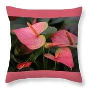 Cluster Anthurium Throw Pillow