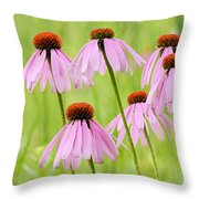 Cluster Of Cone Flowers Throw Pillow