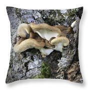 Cluster Of Fungi Throw Pillow
