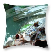 Cluster Of Leaves Throw Pillow