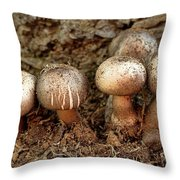 Cluster Of Mushrooms Throw Pillow