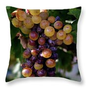 Cluster Of Ripe Grapes Throw Pillow