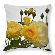 Cluster Of Yellow Roses Throw Pillow