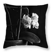 Clustered In A Corner Throw Pillow