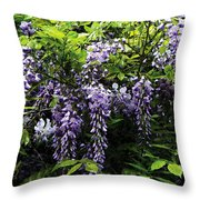 Clusters Of Wisteria Throw Pillow