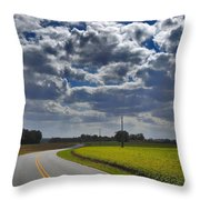 Clyde Fitzgerald Road Scenery Throw Pillow