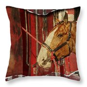 Clydesdale Ripped Throw Pillow