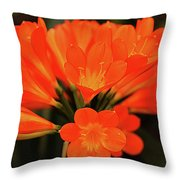 Clyvia Throw Pillow