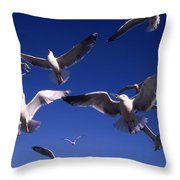 Cnrg0302 Throw Pillow