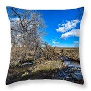 Coal Creek Throw Pillow
