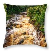Coal Creek Rapids Throw Pillow