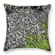 Coast - Abstract Throw Pillow