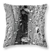 Coast - Crevice Throw Pillow