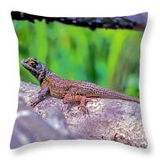 Coast Range Fence Lizard Throw Pillow