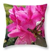 Coast Rhododendran- Washington State Flower Throw Pillow