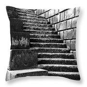 Coast - Sea Stairs Throw Pillow