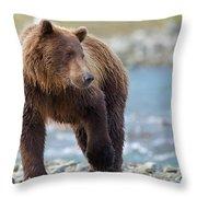 Coastal Brown Bear Throw Pillow