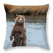 Coastal Brown Bears On Salmon Watch Throw Pillow