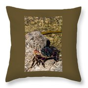 Coastal Crab Throw Pillow