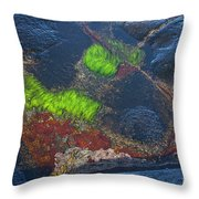 Coastal Floor At Low Tide Throw Pillow