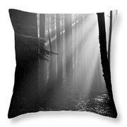 Coastal Forest 2 Throw Pillow