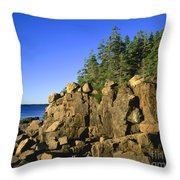 Coastal Maine Throw Pillow by John Greim