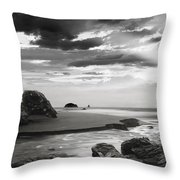 Coastal Waters Throw Pillow