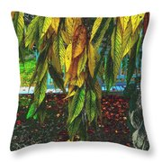 Coat Of Many Colors Throw Pillow
