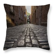 Cobbled Alley Throw Pillow