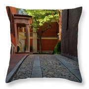 Cobblestone Drive Throw Pillow by Michael Hubley