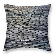 Cobblestone Journey Throw Pillow