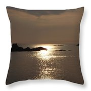 Cobo Sunlight Reflections Throw Pillow