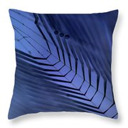 Cobweb Throw Pillow