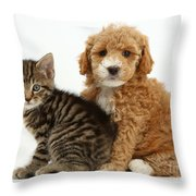 Cockapoo Puppy And Tabby Kitten Throw Pillow