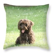 Cockapoo Puppy Throw Pillow