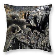 Cockapoo Tends Racoons Throw Pillow