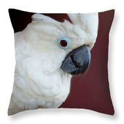 Cockatoo Portrait Throw Pillow