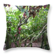Cocoa Tree With Ripe Cocoa Pods Throw Pillow