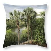 Cocohatchee River  Throw Pillow