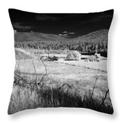 Cocolala Creek 2 Throw Pillow