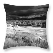 Cocolala Creek Throw Pillow