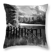 Cocolala Creek Slough 2 Throw Pillow
