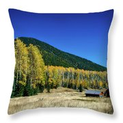 Coconino National Forest Throw Pillow
