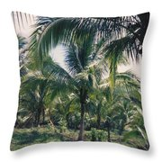 Coconut Farm Throw Pillow