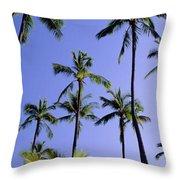 Coconut Grove At Wailua Throw Pillow