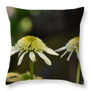 Coconut Lime Echinacea Throw Pillow
