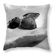 Coconut On The Beach Throw Pillow