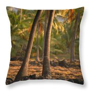 Coconut Palm Grove Throw Pillow